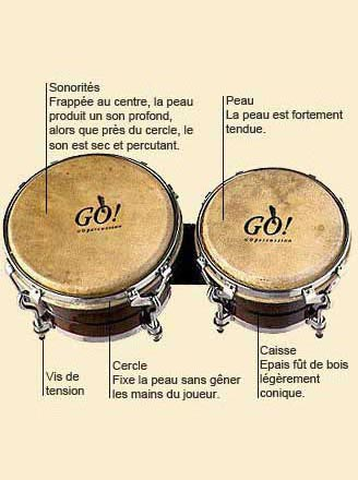 photo de Bongos