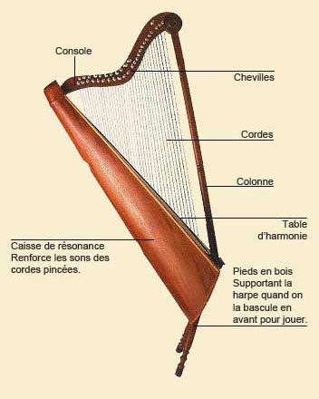 photo de Harpe andine